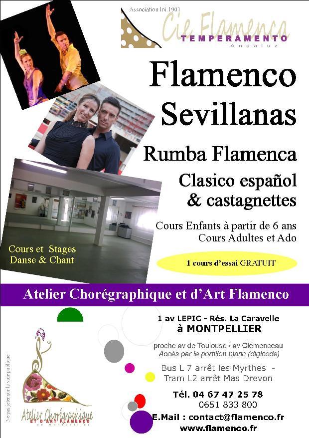 association flamenco puro montpellier. Black Bedroom Furniture Sets. Home Design Ideas